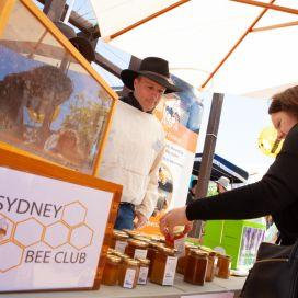 Sydney-Bee-Club.jpg