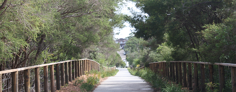 A stroll through Environment Park is a beautiful way to enjoy our natural flora a fauna.