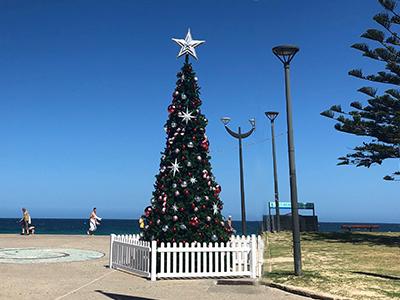 Maroubra Beach Xmas tree