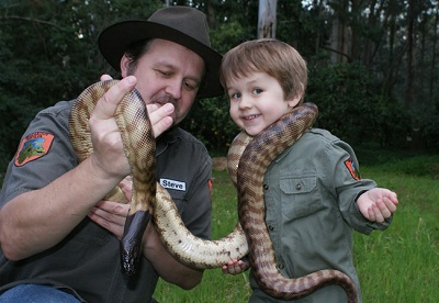 Walkabout reptiles (two shows)