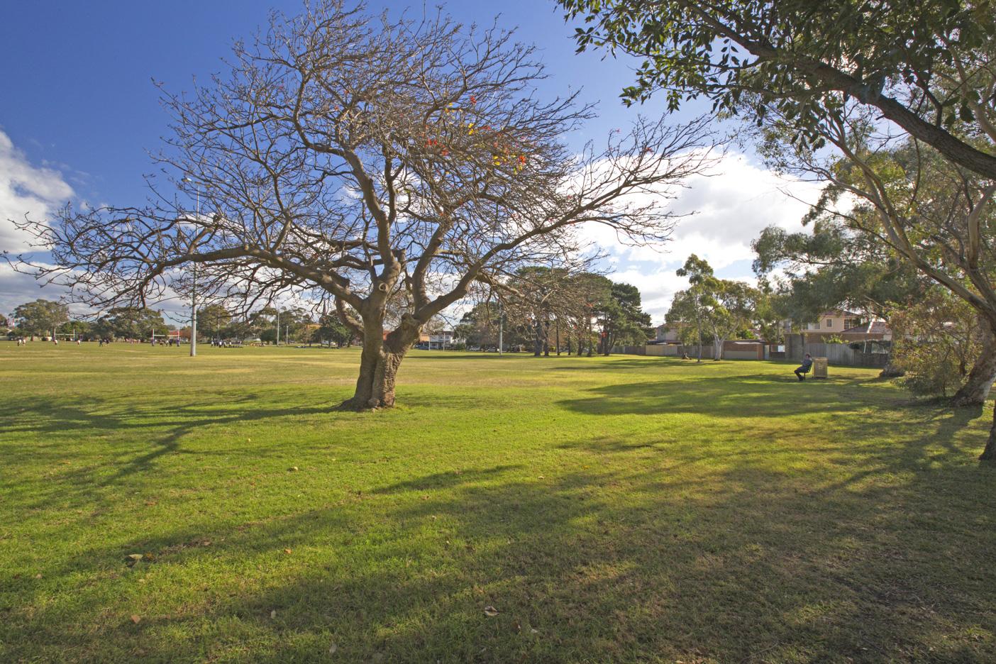 Nagle Park Maroubra