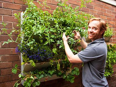 Vertical garden at Barrett House Photo: Russ Grayson
