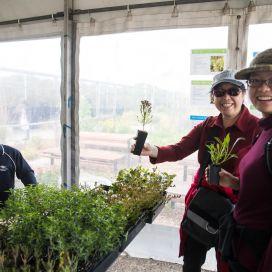 Ecoliving-fair-plant-stall.jpg