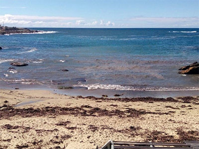 Brown discolouration at Gordons Bay on Friday 9 March 2018.