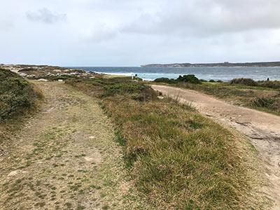 Coastal Walkway extension through NSW Golf Course.